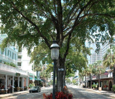 Christmas on Las Olas