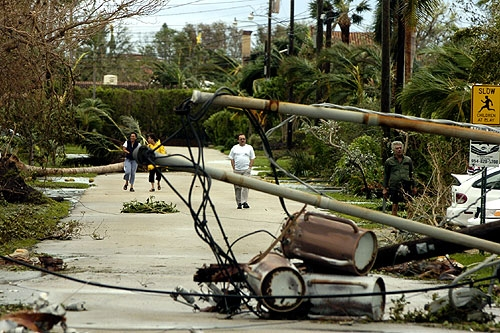 Fallen Power Lines And Transformers on NE 15th Street in Fort Lauderdale